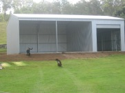 shed 2009 009